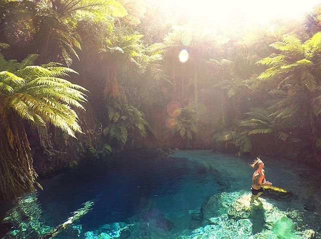 Our mate @logan_dodds is  exploring the epic beauty that is the North Island, and yesterday came across one of his greatest finds yet - an idyllic spot known as Blue Springs, Putaruru. Keep the local tips coming as he continues on his trip North! #ShareYourNZ #MyKiwiOE #WhereToNext