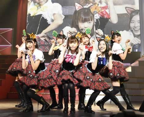 画像|島崎遥香ら7人がリアル「ニャーKB」を結成!=『第4回AKB48紅白対抗歌合戦』(C)AKS 1枚目