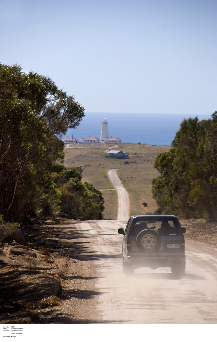 Cape Willoughby.    Image Source: SA Tourism Commission.