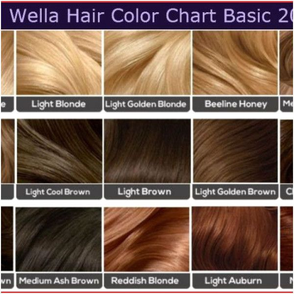 25 Loreal Hair Color Ash Brown 25 Loreal Hair Color Ash Brown Encouraged To Our Blog On This Period I Clairol Hair Color Hair Color Chart Hazelnut Hair Color