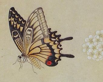 Japanese Woodblock Print Elgin Court Designs Limited, Design 112 Japanese Style Card Flowers and Butterflies