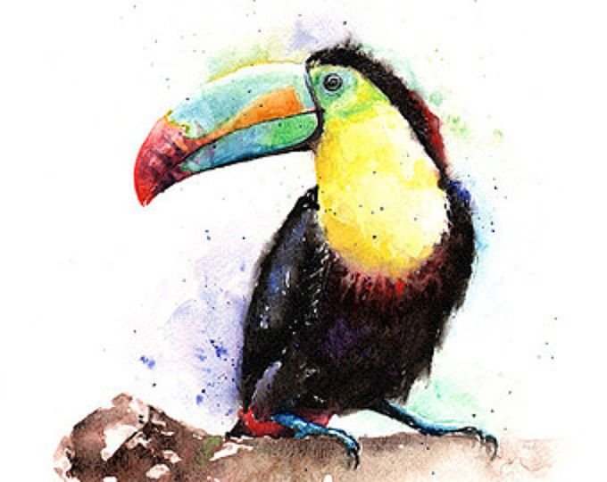 TOUCAN aquarel - originele vogel kunst, toucan decor, toucan kunst aan de muur, toucan illustraties, vogel illustraties, vogel home decor, Kiel gefactureerd