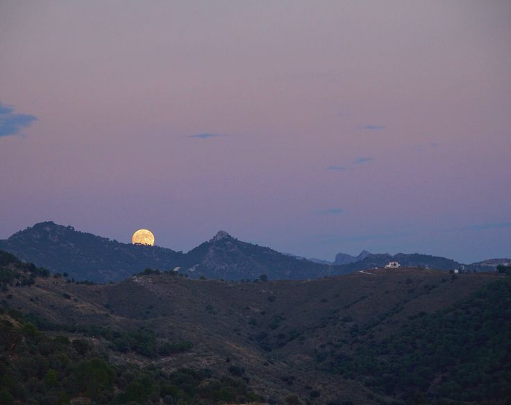 Shot this photo in the early evening before the moon turned red.  #travel #bloodmoon #photography #landscape