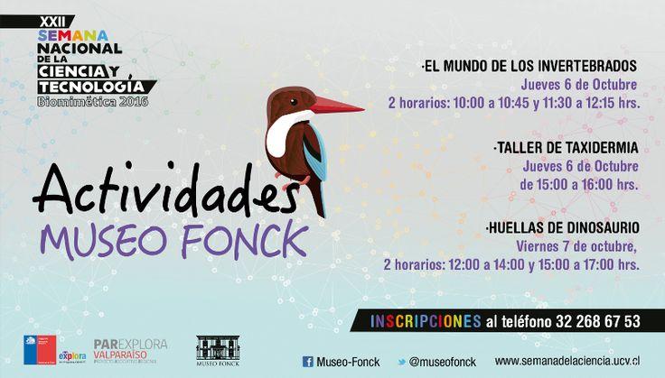 .:: CORPORACIÓN MUSEO FONCK ::. - Entretenidas actividades en el marco de la XXII Semana Nacional de la Ciencia y la Tecnología