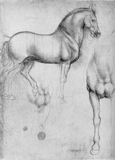 Leonard de Vinci - Dessins