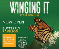 Butterfly Pavilion | Natural History Museum of Los Angeles | April 13, 2014-September 1, 2014 #laweekend
