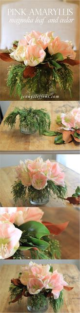 Easy DYI Holiday Centerpiece : Pale Pink Amaryllis, Magnolia Leaf & Cedar Flower Arrangement     http://jennysteffens.blogspot.com/2012/12/easy-dyi-holiday-centerpiece-pale-pink.html