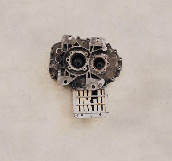 Skull  .  David Kemp