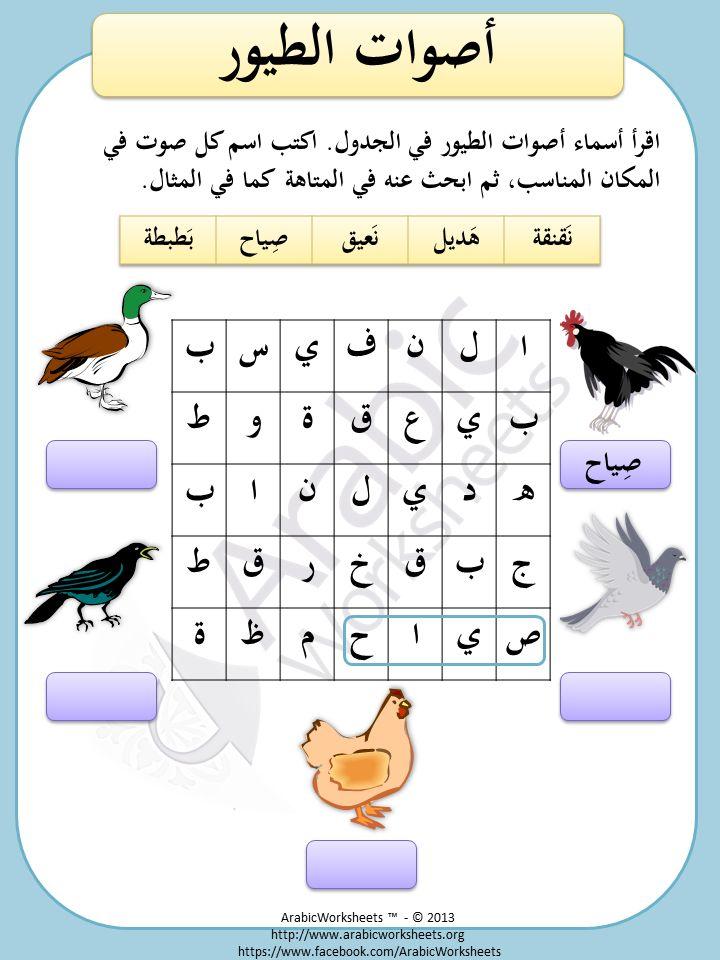 Birds Sounds - Arabic Vocab