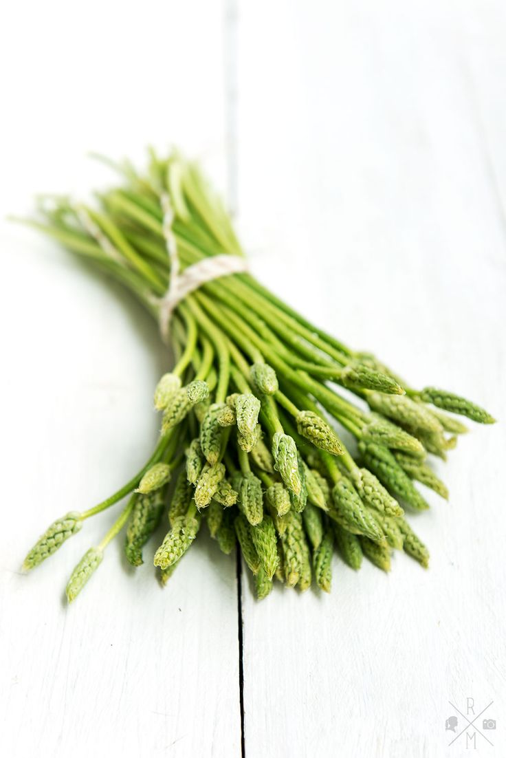 Wild Asparagus   relleoMein