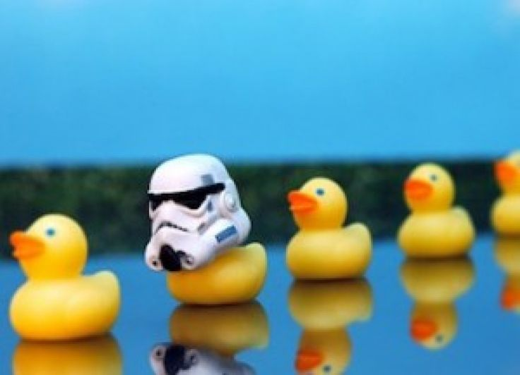 Going over to the duck side: a week using DuckDuckGo