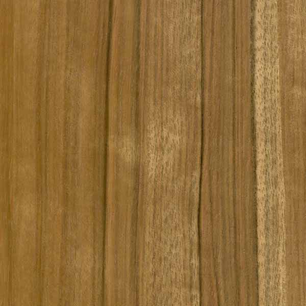 Paldao | Levey Wallcovering and Interior Finishes: click to enlarge