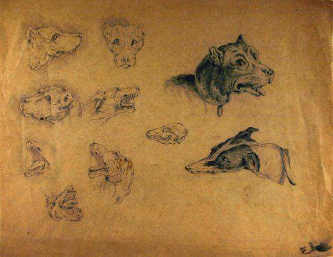 Untitled (Animal Head Studies), 1874, Carl von Marr, Museum of Wisconsin Art, 0131.