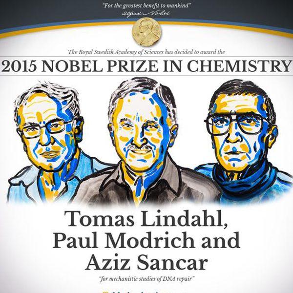 Nobel de Química mostra como células reparam DNA danificado