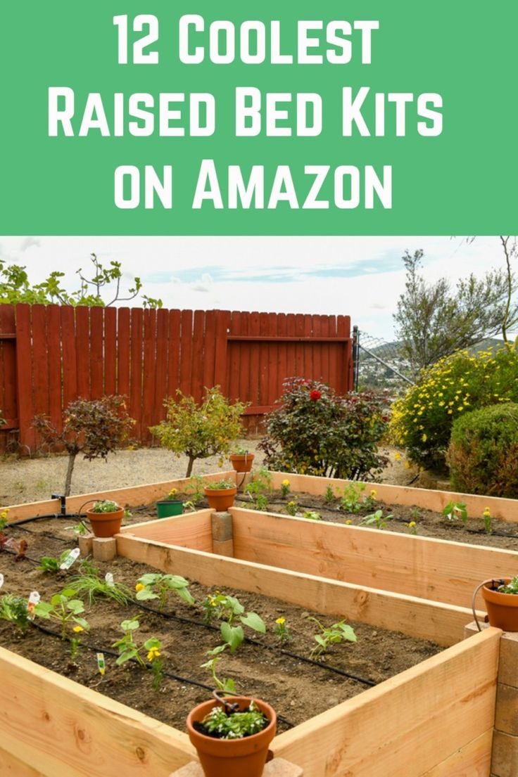 12 Coolest Raised Bed Kits Available on Amazon in 2020
