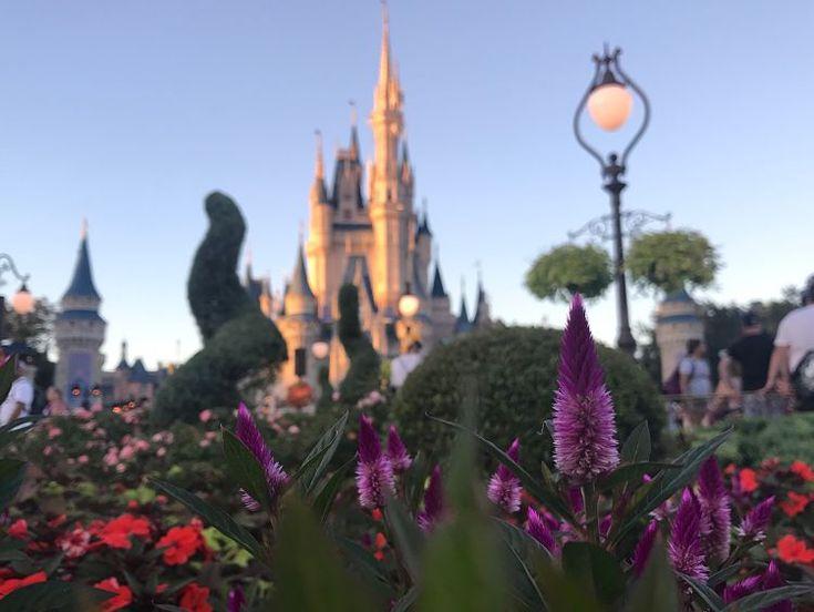 Walt #Disney World Raises Prices of Tickets and Annual Pass – Disney Hub