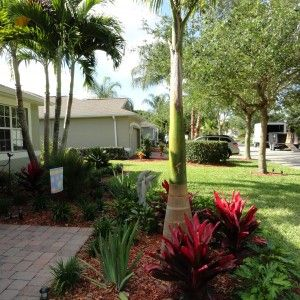38 best images about Vero Beach Landscape Design and