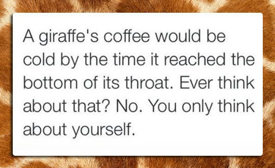 Those poor giraffes. I shall remember them when I drink coffee. XD