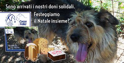 Sono arrivati i doni solidali di Lega del Cane: festeggiamo insieme?