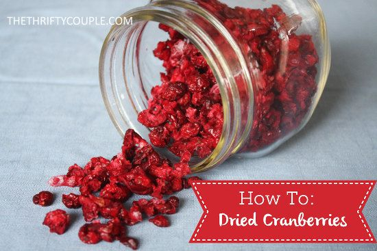 How To Make Dried Cranberries (DIY Copy Cat Craisins)