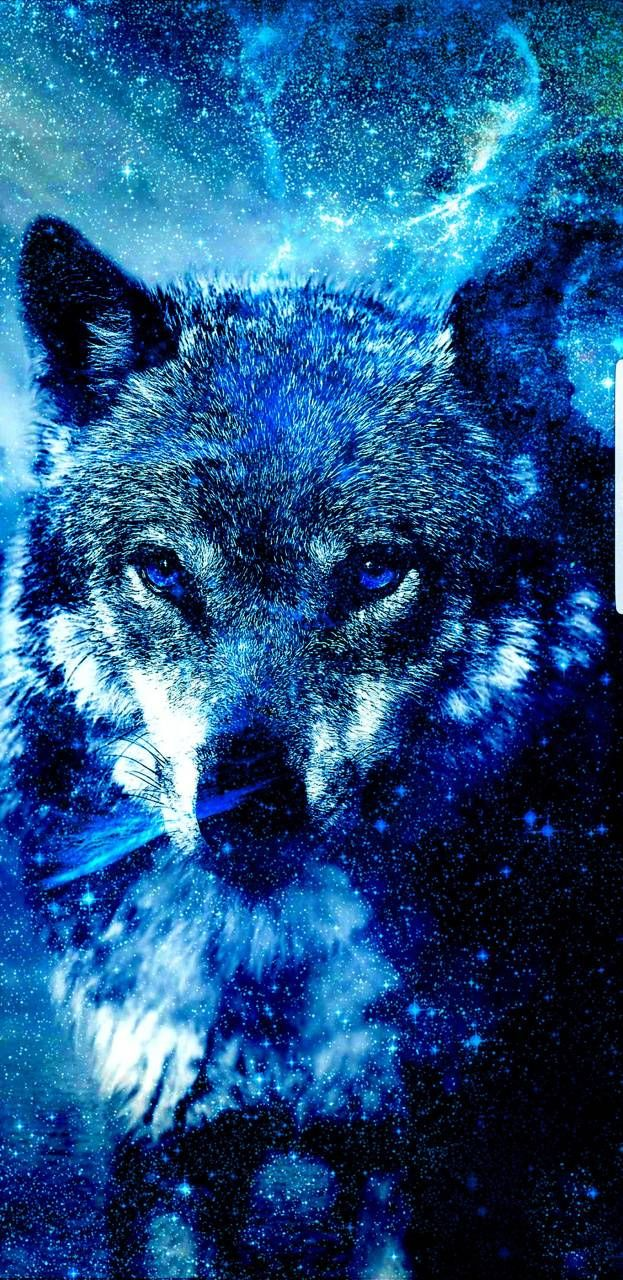 Best Free 4k Phone Wallpapers Cool Backgrounds Galaxy Wolf Wolf Wallpaper Ice Wolf Wallpaper