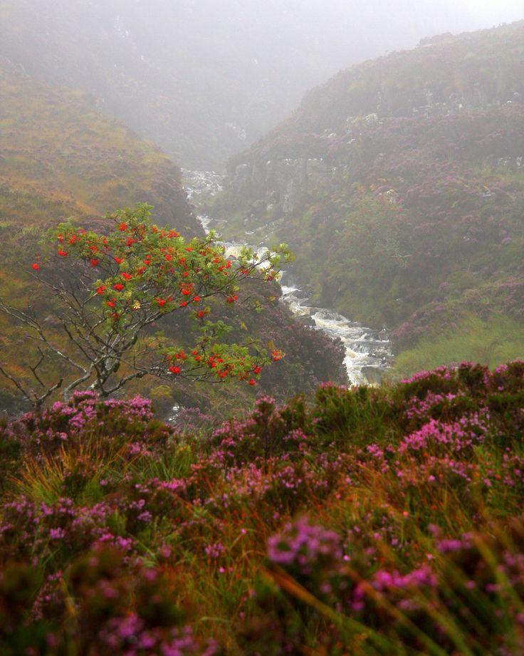 The Scottish Highlands (by J Samuel)