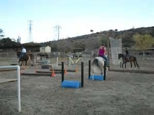 Image Search Results for horse training obstacles