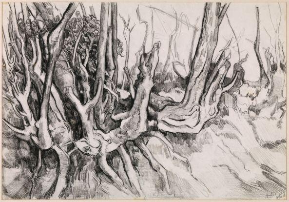 Wortelstronken - Alfred Hafkenscheid - tekening 1968
