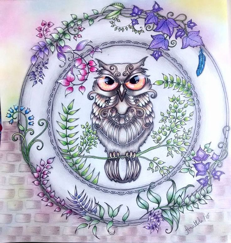 96 Enchanted Forest Coloring Book Finished Owl