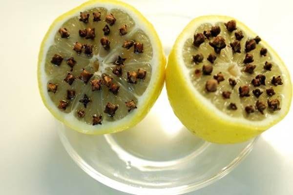 Ezt tedd ki a lakásodban és garantáltan elkerülik majd a legyek és a rovarok - Tudasfaja.com