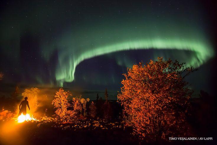 valokuvaus – Arktiset valokuvaajat