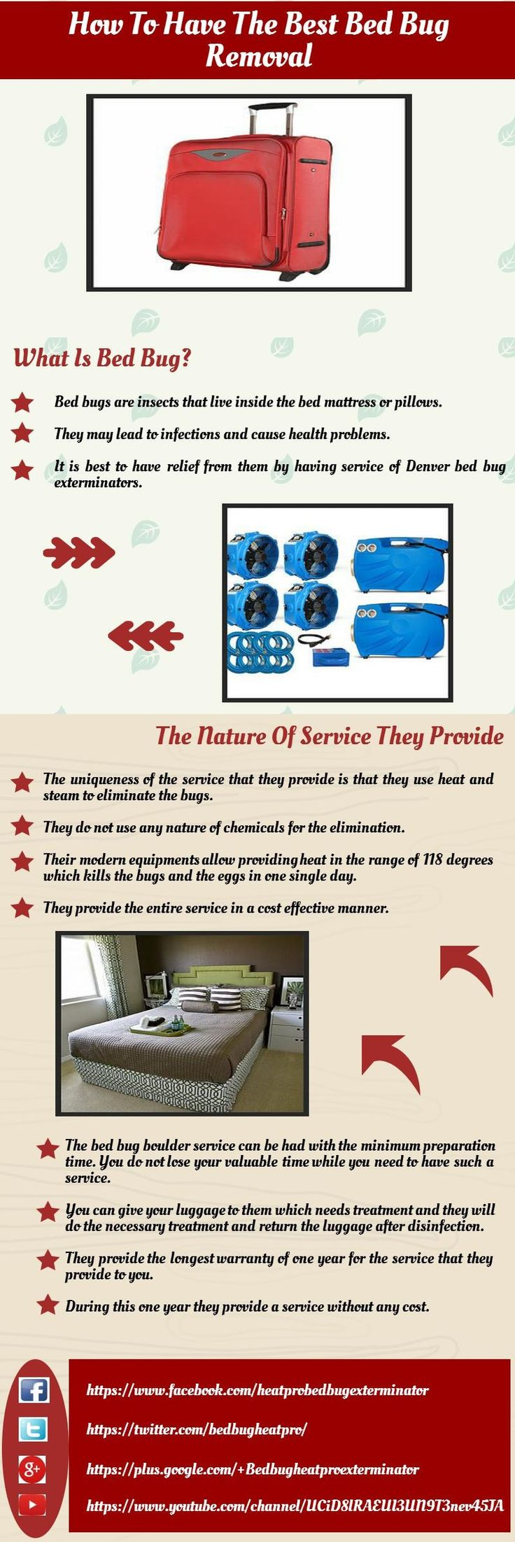 florida bugs boca bed bedbugs service delray pest termite control work services bedbug and removal bug