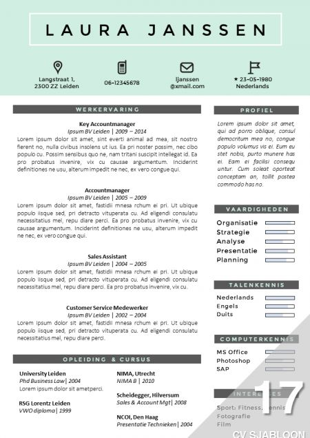 Best Cv Images On   Cv Template Page Layout And