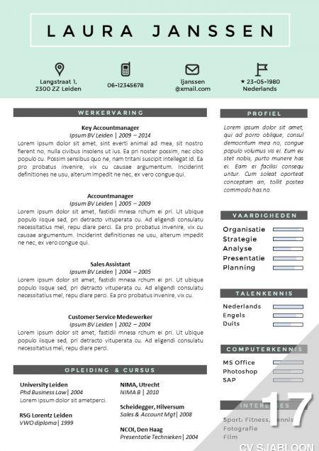 Creatief CV sjabloon, eenvoudig zelf te bewerken in MS Office. http://deleydsche.nl/product/cv-sjabloon-17