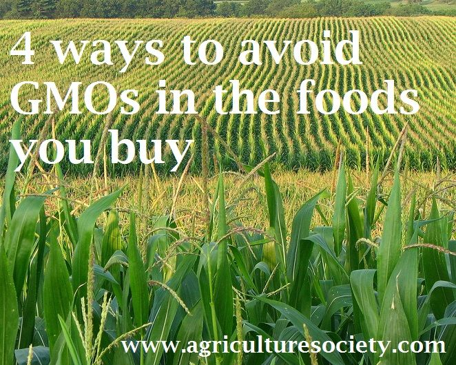 http://agriculturesociety.com/politics-and-food/4-ways-to-avoid-gmos-in-the-foods-you-buy/