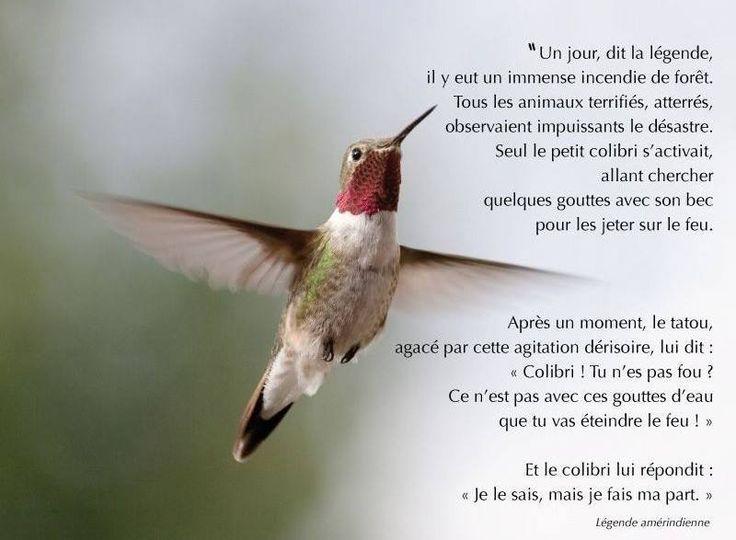 """C 'est grâce à la  légende du colibri que j 'ai découvert la pensée et le travail de : """"Pierre Rabhi"""" il y a déjà quelques années déjà Bien à vous Paty"""