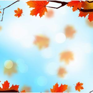 Leaves Background Wallpaper | leaves background wallpaper