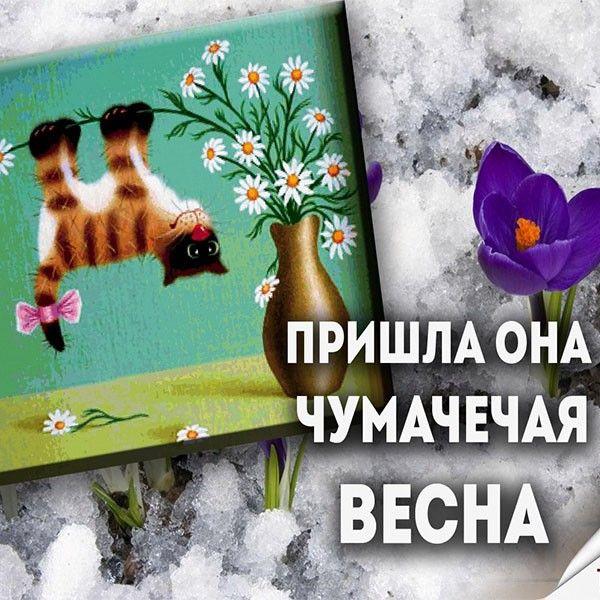 Прикольные открытки весну