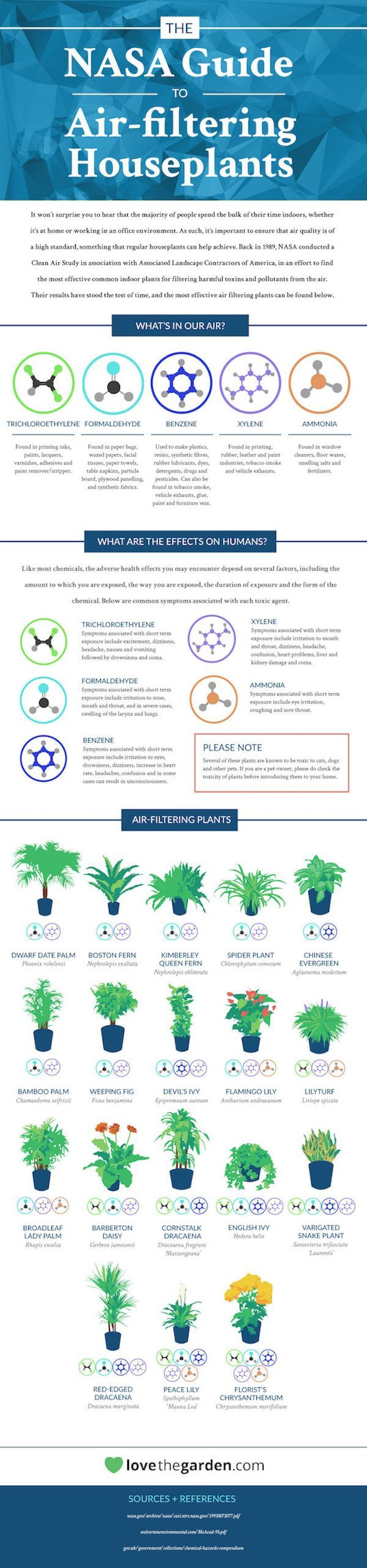 The 25 best peace lily ideas on pinterest best indoor plants 18 houseplants that help purify your homes air peace lilythe dhlflorist Image collections