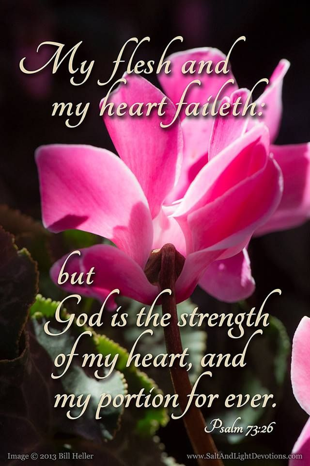 Psalm 73:26...oh how I love this! This has become my life verse! ♥
