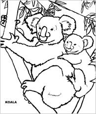 Printable Animal Coloring Page - Koala
