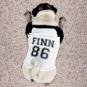 Voor hippe honden is dit unieke honden t-shirt met eigen naam een absolute must have!