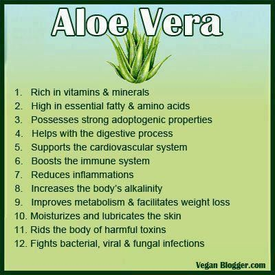 Why aloe?? This is why Forever Living fills their health & wellness products with the finest aloe available and brings it to you! Check it all out at www.kathycallahan.myflpbiz.com