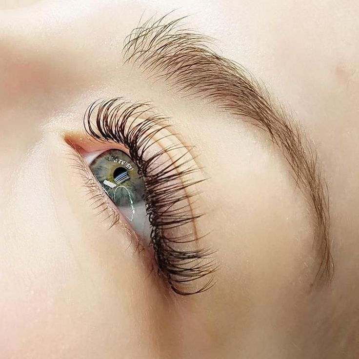 Mink Individual Lashes Where To Buy Lash Extensions