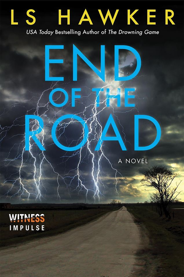 the real danger is much closer - End of the Road by L.S. Hawker