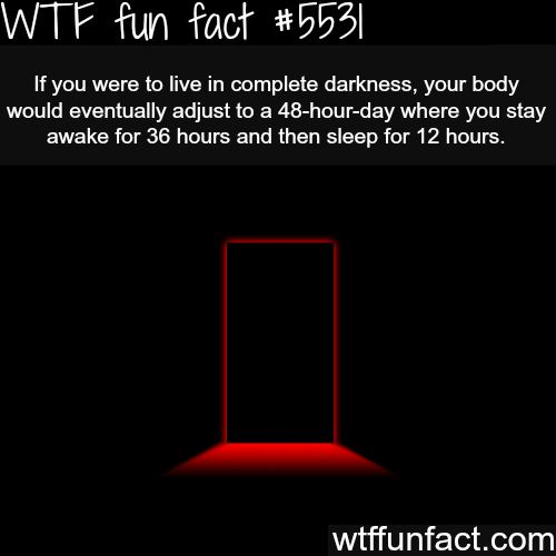 Living in complete darkness - WTF fun facts