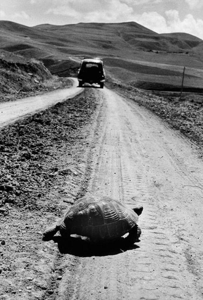 Mi jut először eszedbe a fotóról? Egy szó, egy mondat, bármi. Fotó: Marc Riboud: Úton, Törökország, 1955 © Magnum Photos(forrás: loeildelaphotographie.com)