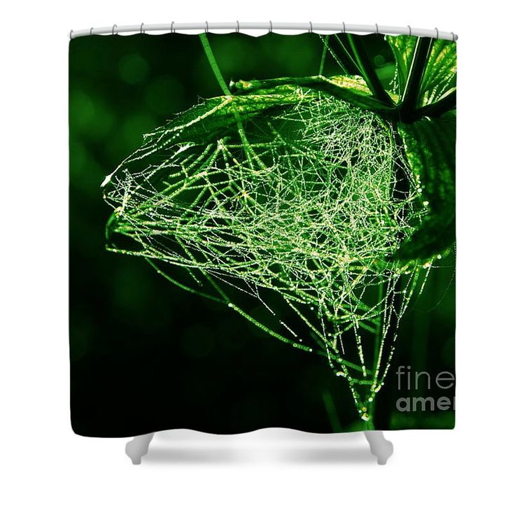 "Morning Dew In The Green Shower Curtain by Sverre Andreas Fekjan.  This shower curtain is made from 100% polyester fabric and includes 12 holes at the top of the curtain for simple hanging.  The total dimensions of the shower curtain are 71"" wide x 74"" tall."