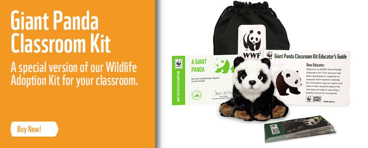 Website: Schools for a Living Planet from the World Wildlife Foundation