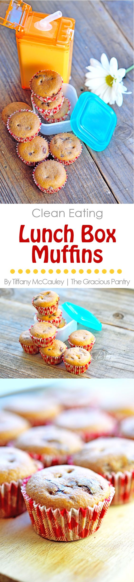 These wonderful little lunch box sized snack muffins are the perfect treat for back to school!  ~ www.TheGraciousPantry.com